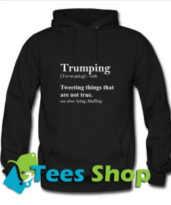 Trumping Definition, a Funny Anti Trump Hoodie_SM1