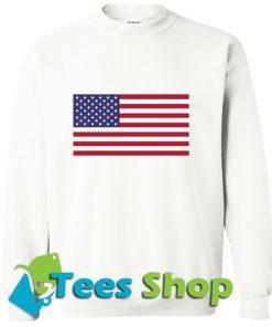 USA Flag Sweatshirt_SM1
